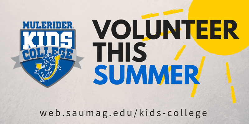 Volunteer this Summer