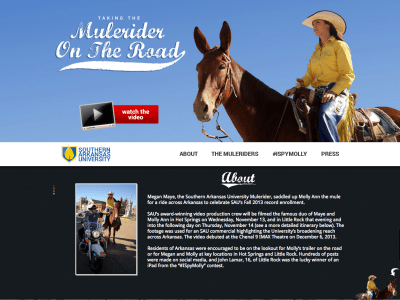 Mulerider on the Road